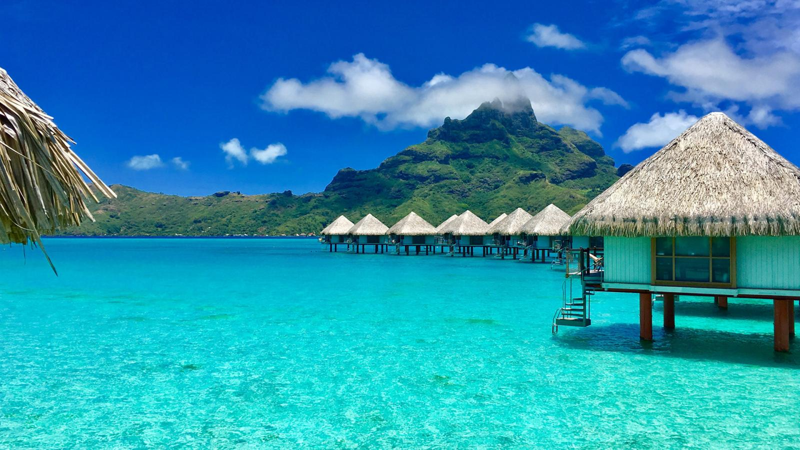 Mise à disposition Polynésie2020: à partir du 24février!